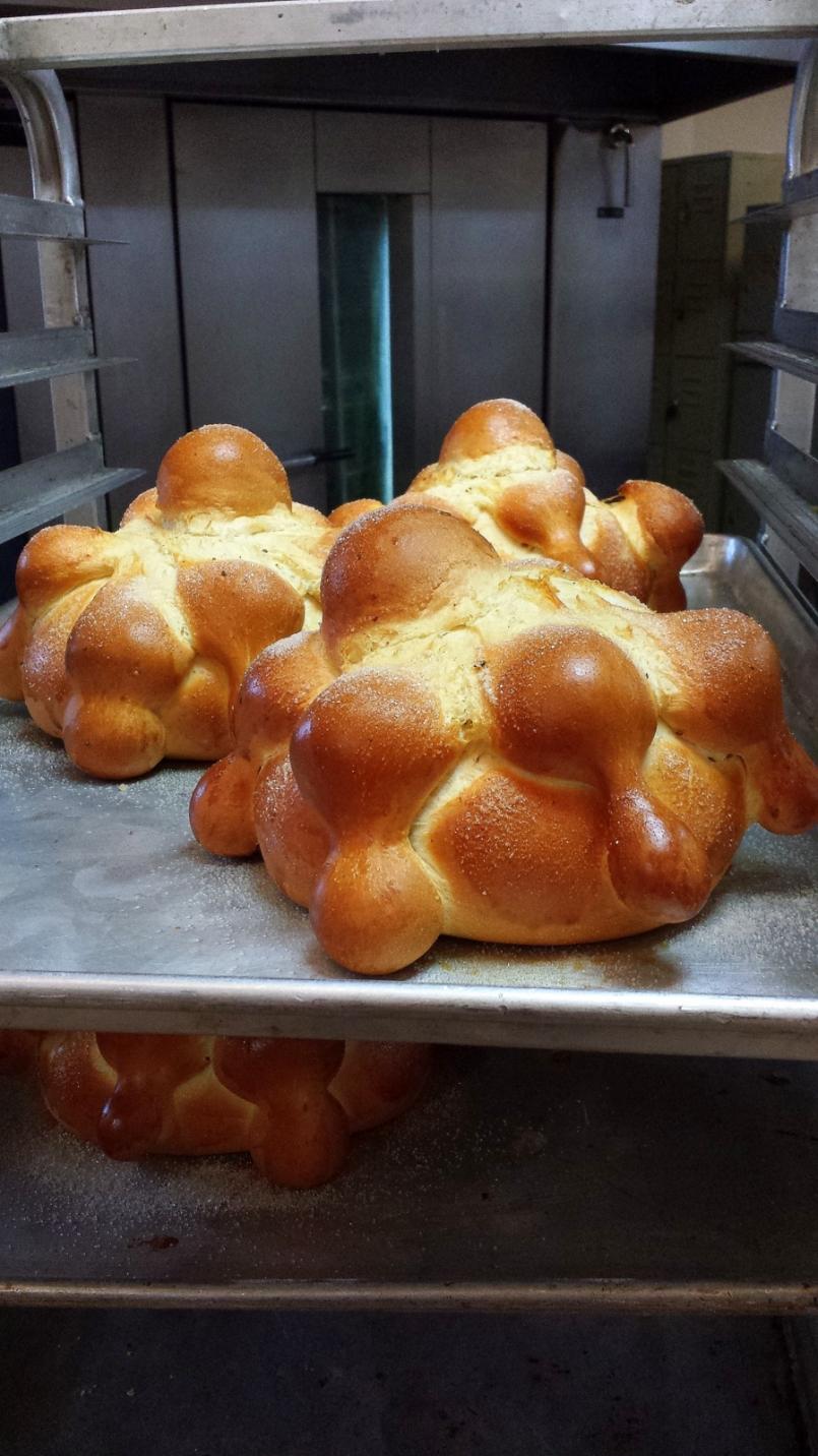 Pan de muerto.JPG